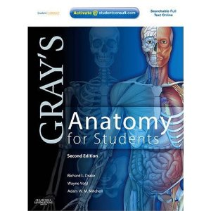 Gray's Anatomy for Students ISBN 9780443069529